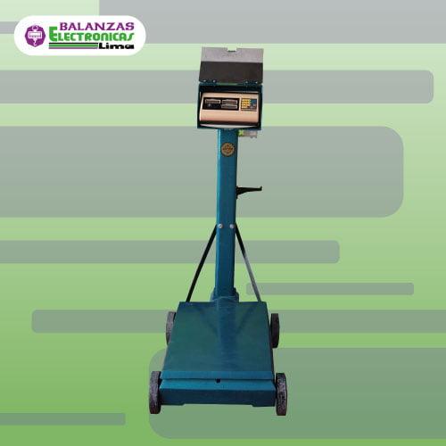 Balanza Electromecánica Excell Lap 500 kg