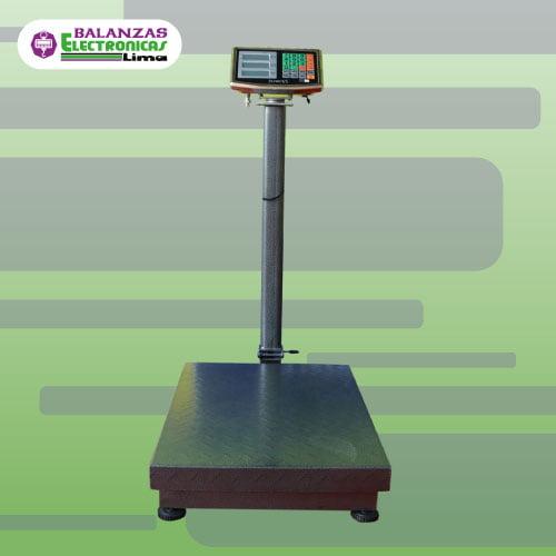 Balanza de Plataforma Patricks 300 kg