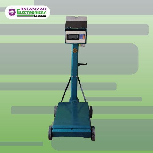 Balanza Electromecánica e-Accura Sb53 500 kg