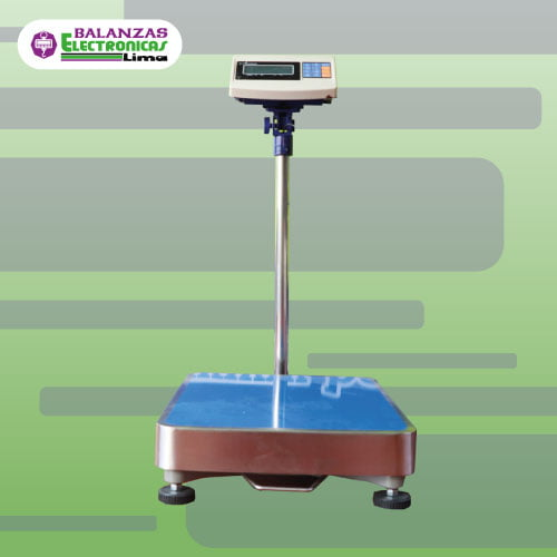 Balanza de Plataforma e-Accura Sb53 300 kg